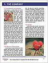 0000082007 Word Templates - Page 3