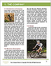 0000082012 Word Template - Page 3