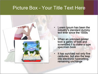 0000082015 PowerPoint Template - Slide 20