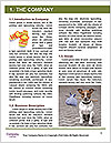 0000082015 Word Template - Page 3