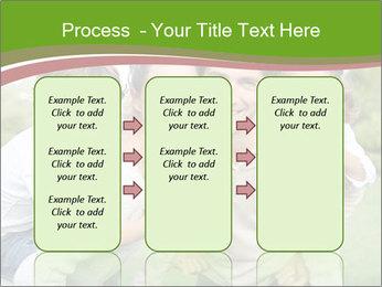 0000082017 PowerPoint Template - Slide 86