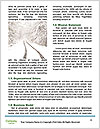 0000082020 Word Template - Page 4