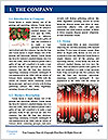0000082022 Word Templates - Page 3