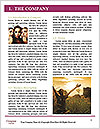 0000082023 Word Template - Page 3