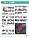 0000082035 Word Template - Page 3