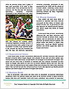 0000082035 Word Template - Page 4