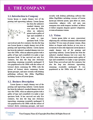 0000082042 Word Template - Page 3