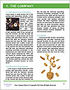 0000082043 Word Templates - Page 3