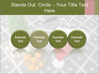 0000082049 PowerPoint Template - Slide 76