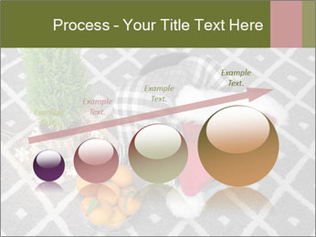 0000082049 PowerPoint Template - Slide 87