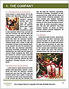 0000082049 Word Template - Page 3