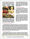 0000082049 Word Template - Page 4