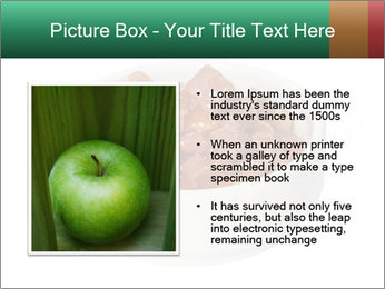 0000082051 PowerPoint Template - Slide 13