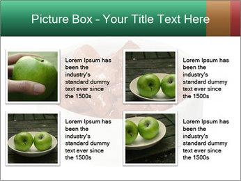 0000082051 PowerPoint Templates - Slide 14