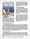 0000082052 Word Template - Page 4