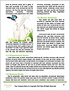 0000082053 Word Template - Page 4