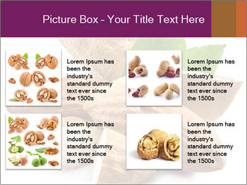 0000082055 PowerPoint Templates - Slide 14