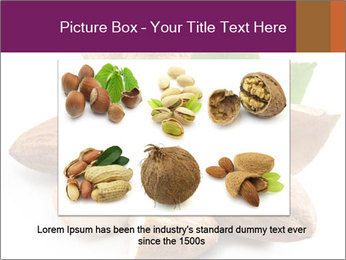 0000082055 PowerPoint Templates - Slide 15