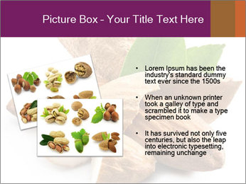0000082055 PowerPoint Templates - Slide 20