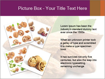 0000082055 PowerPoint Templates - Slide 23