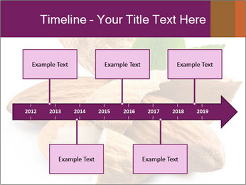 0000082055 PowerPoint Templates - Slide 28