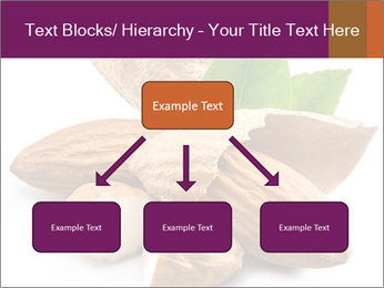 0000082055 PowerPoint Templates - Slide 69