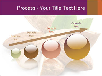 0000082055 PowerPoint Templates - Slide 87