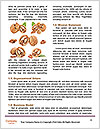 0000082055 Word Templates - Page 4