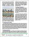 0000082061 Word Template - Page 4