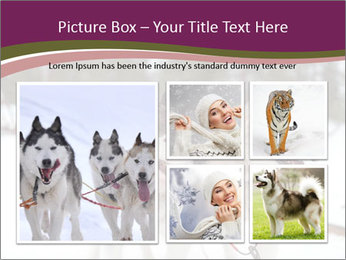0000082079 PowerPoint Template - Slide 19