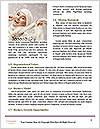 0000082079 Word Templates - Page 4