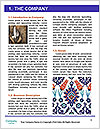 0000082084 Word Template - Page 3