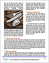 0000082084 Word Template - Page 4