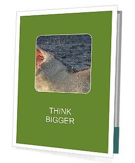 0000082102 Presentation Folder