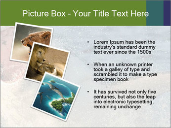 0000082102 PowerPoint Template - Slide 17