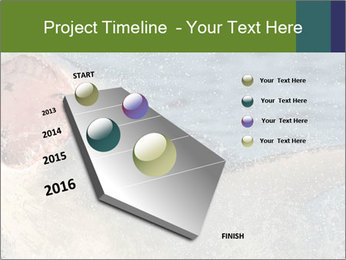 0000082102 PowerPoint Template - Slide 26