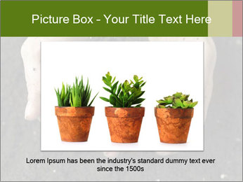 0000082108 PowerPoint Template - Slide 15