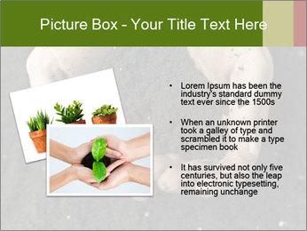 0000082108 PowerPoint Template - Slide 20