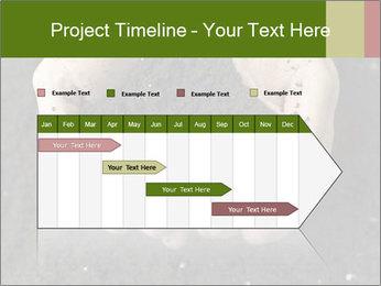 0000082108 PowerPoint Template - Slide 25