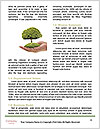 0000082108 Word Templates - Page 4