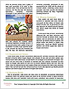 0000082116 Word Templates - Page 4