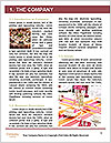 0000082120 Word Template - Page 3