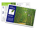 0000082126 Postcard Templates