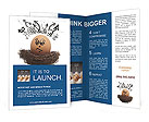 0000082133 Brochure Templates