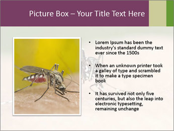 0000082142 PowerPoint Template - Slide 13