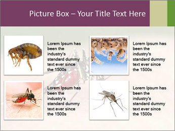 0000082142 PowerPoint Template - Slide 14