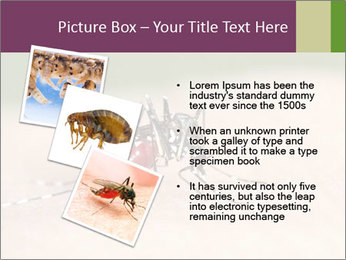 0000082142 PowerPoint Template - Slide 17
