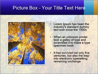 0000082143 PowerPoint Template - Slide 13