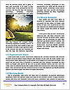 0000082143 Word Template - Page 4