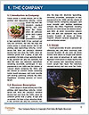 0000082153 Word Template - Page 3
